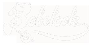 Bobelock Cases